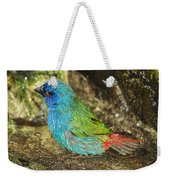 Forbes Parrot Finch Weekender Tote Bag