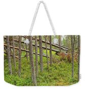 Forest After Storm - Fall Pines In Wild Forest Weekender Tote Bag