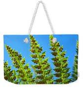 Forest Ferns Art Prints Blue Sky Botanical Baslee Troutman Weekender Tote Bag
