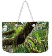 Forest Ferns Art Prints Fern Giclee Prints Baslee Troutman Weekender Tote Bag