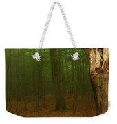 Forest Light 1 Weekender Tote Bag