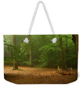 Forest Light 4 Weekender Tote Bag