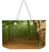 Forest Light Weekender Tote Bag