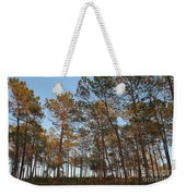 Forest Pine Trees At Sunset Weekender Tote Bag