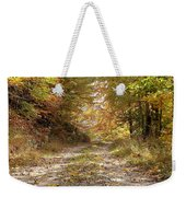 Forest Stone Path Weekender Tote Bag