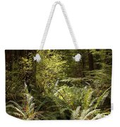 Forest Sunlight And Shadows  Weekender Tote Bag