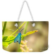 Forester Moth From Bulgaria Weekender Tote Bag