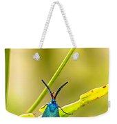 Forester Moth  Weekender Tote Bag