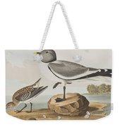 Fork-tailed Gull Weekender Tote Bag