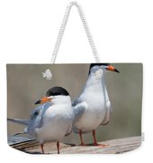 Forster's Terns Weekender Tote Bag