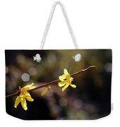 Forsythia Flowers Weekender Tote Bag by Helga Novelli