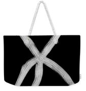 Fossil: Starfish Weekender Tote Bag