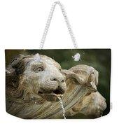 Fountain Detail Weekender Tote Bag