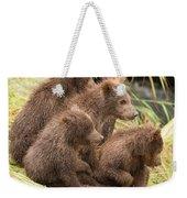 Four Bear Cubs Looking In Same Direction Weekender Tote Bag