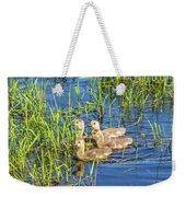 Four Goslings Weekender Tote Bag