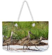 Four Marbled Godwits Weekender Tote Bag