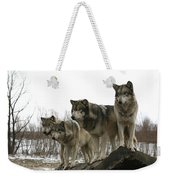 Four Pack Weekender Tote Bag