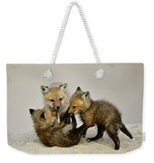 Fox Cubs At Play Weekender Tote Bag