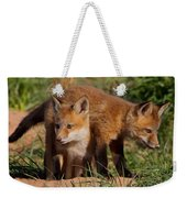 Fox Cubs Playing Weekender Tote Bag by William Jobes
