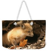 Fox Kit At Entrance To Den Weekender Tote Bag