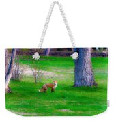 Fox Of Boulder County Weekender Tote Bag