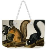 Fox Squirrel Weekender Tote Bag by John James Audubon