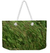 Foxtail Barley - Salisbury Potrero Weekender Tote Bag