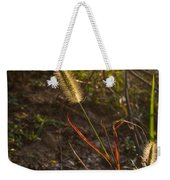 Foxtail Glowing In Sun Weekender Tote Bag