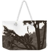 Framed By The Branches Weekender Tote Bag