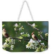 Framed Cardinals In Spring Weekender Tote Bag