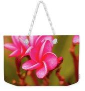 Pink Frangipani Plumeria Flowers Weekender Tote Bag