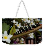 Frangipani Tree And Caterpillar Weekender Tote Bag