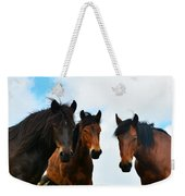 Free Wild Horses On The Mountain Weekender Tote Bag