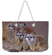 Freezing Meer Cats Weekender Tote Bag
