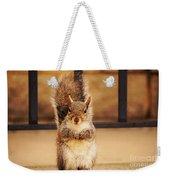 French Fry Eating Squirrel2 Weekender Tote Bag