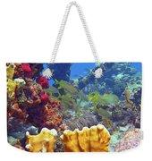 French Reef 1 Weekender Tote Bag