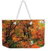 Fresco Autumn Diptych Left Weekender Tote Bag