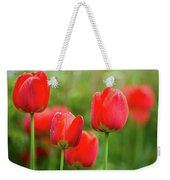 Fresh Spring Tulips Flowers With Water Drops In The Garden  Weekender Tote Bag