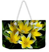 Fried Eggs Weekender Tote Bag