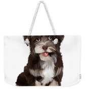Friendly Dog Weekender Tote Bag