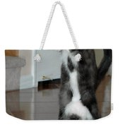 Frisbee Cat Weekender Tote Bag