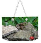 Frog On A Rock Weekender Tote Bag