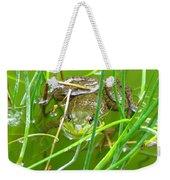 Frog Playing Hide N Seek Weekender Tote Bag