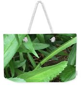 Frog Under Green Weekender Tote Bag