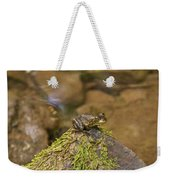Froggy On A Hill Weekender Tote Bag