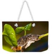 Frogs Life Weekender Tote Bag
