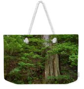 From Grove Of The Patriarchs 2 Weekender Tote Bag