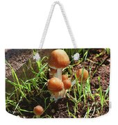 Front Pourch Mushroom Family Weekender Tote Bag