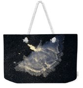 Frost Formation In The Shape Of A Moth Weekender Tote Bag