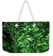 Frost On Window 2 Weekender Tote Bag